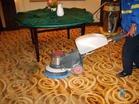 (图)地毯清洗