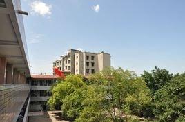 高县沙河实验小学校论文阅读课外小学生图片