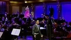 王宏伟维也纳金色大厅独唱音乐会