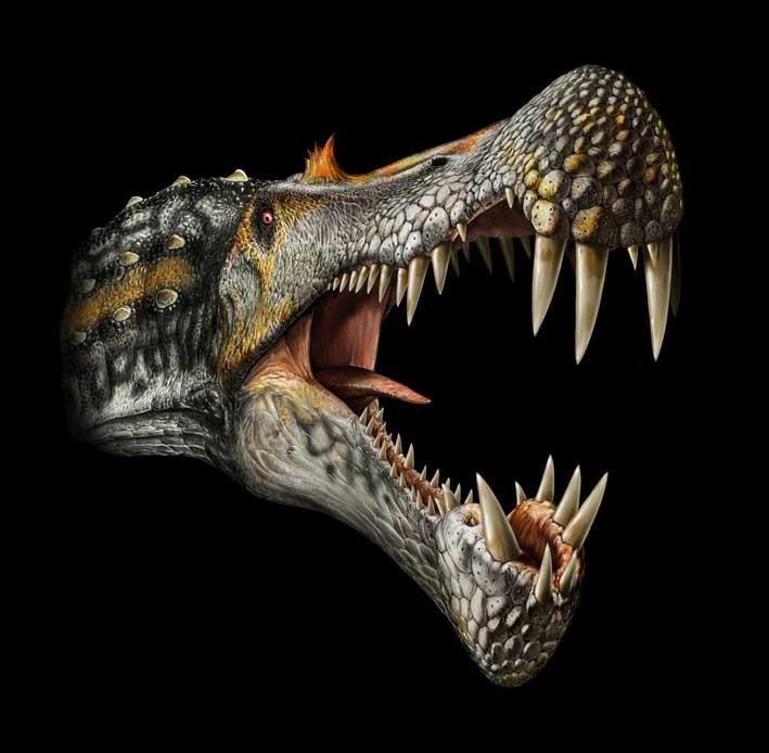 动物 恐龙 709_694