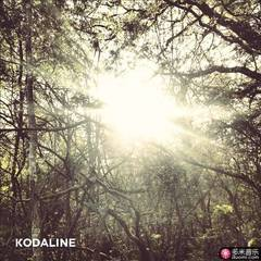 the kodaline
